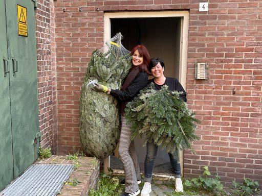 Afbeelding #001 voor het verhaal Decemberdecoraties in Middelburg Centrum, een oproepje