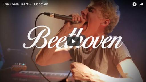 Afbeelding #000 voor het verhaal Beethoven, de Middelburgvariant