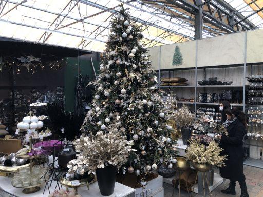 Afbeelding #004 voor het verhaal De Kerstshow 2020 van Groenrijk Middelburg