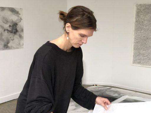 Afbeelding #003 voor het verhaal De kunstenaars van MAS/GHL in Middelburg: Femke Gerestein