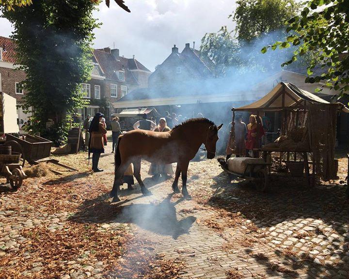 Afbeelding #000 voor het verhaal Dit was De Stad in 2017: Middelburg in september
