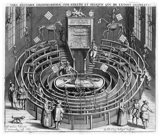 Afbeelding #003 voor het verhaal Een bijzondere geschiedenis: het Anatomisch Theater in de Nieuwstraat in Middelburg