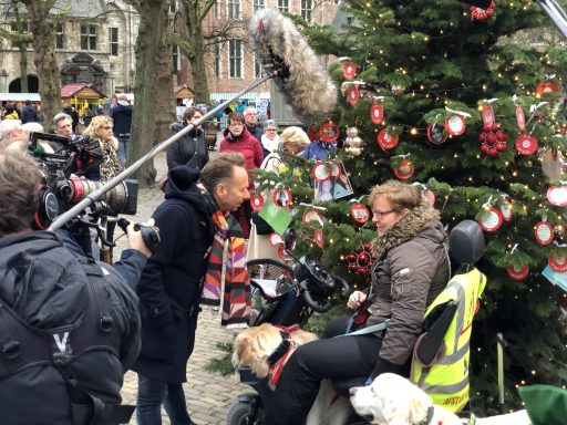 Afbeelding #003 voor het verhaal Joris' Kerstboom in Middelburg