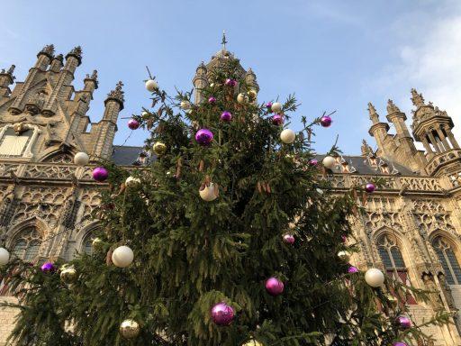 Afbeelding #000 voor het verhaal Joris' Kerstboom in Middelburg
