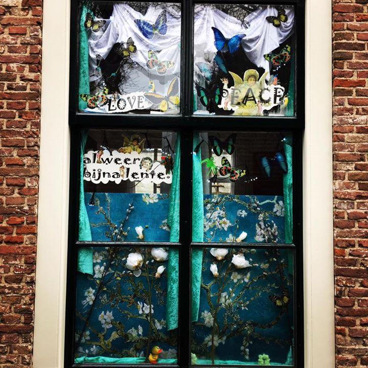 Afbeelding #000 voor het verhaal Lentegevoel in de Bellinkstraat, 3 januari 2017