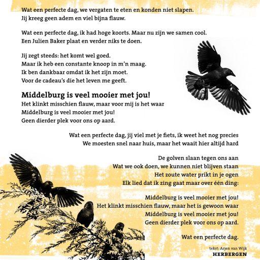 Afbeelding #000 voor het verhaal Middelburg is mooier met Marijn