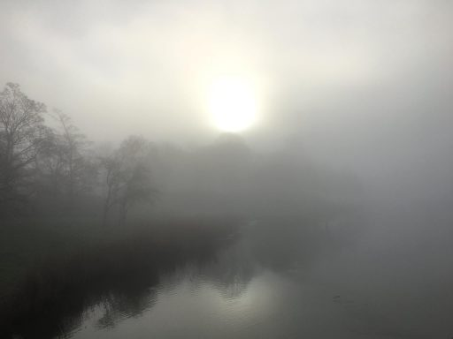 Afbeelding #003 voor het verhaal Mistig Middelburg