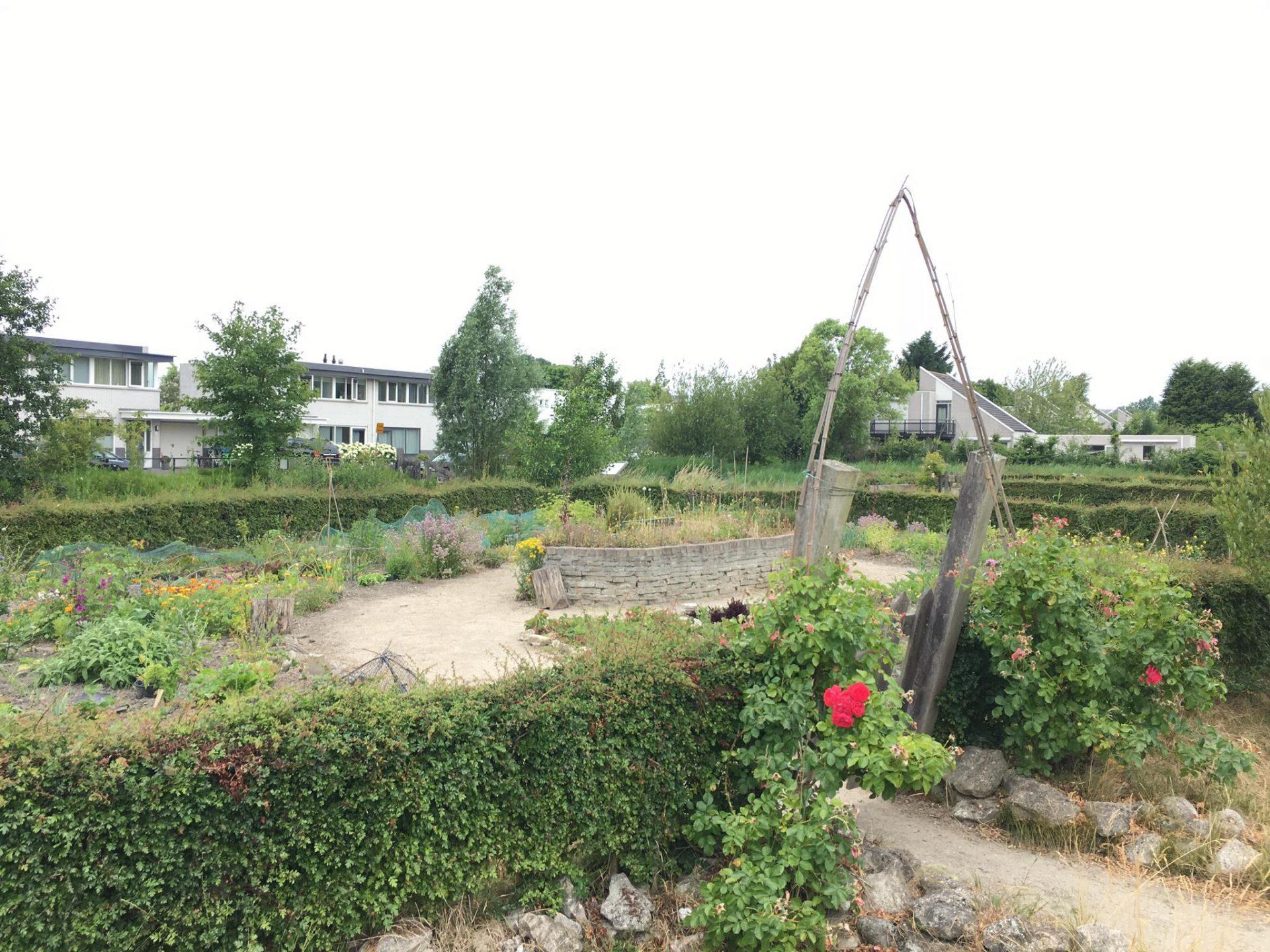 Afbeelding #000 voor het verhaal Modderdag bij Speelhof Hoogerzael in Middelburg