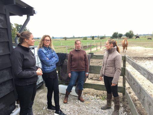Afbeelding #000 voor het verhaal Op bezoek bij 'Samenwerken met je paard' in Middelburg