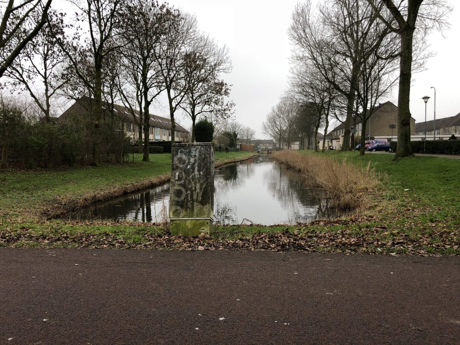 Afbeelding #000 voor het verhaal Opgroeien in Dauwendaele, 1983-1990