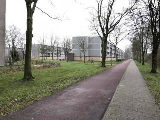 Afbeelding #001 voor het verhaal Opgroeien in Dauwendaele, 1983-1990