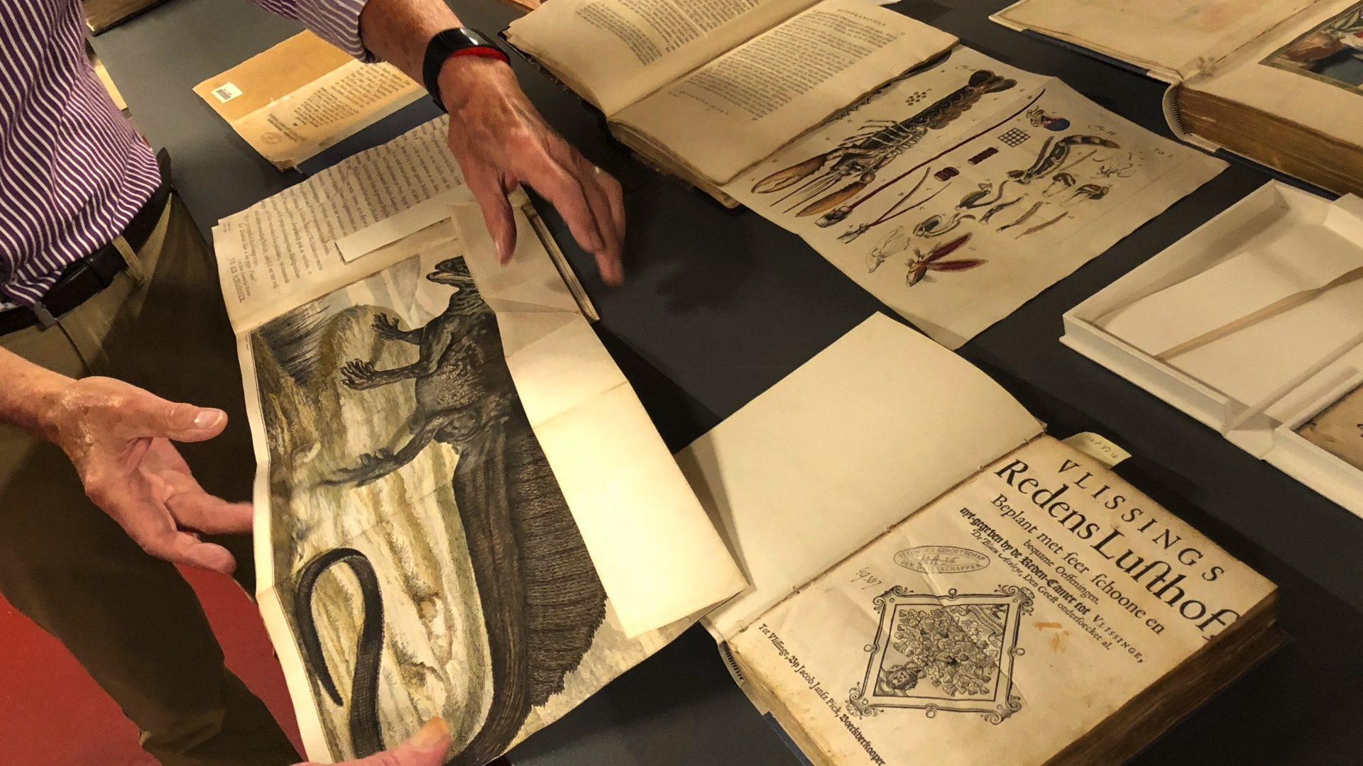 Afbeelding #000 voor het verhaal Over de Collectie (Online) van het jarige Zeeuws Genootschap