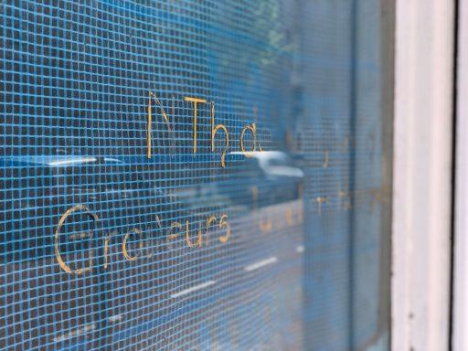 Afbeelding #002 voor het verhaal Pand Juwelier de Jong in de Sint Pieterstraat wordt woonhuis