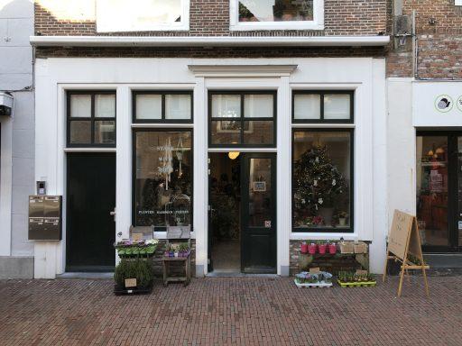 Afbeelding #000 voor het verhaal Plantenwinkel Start with Dirt geopend in de Langeviele in Middelburg