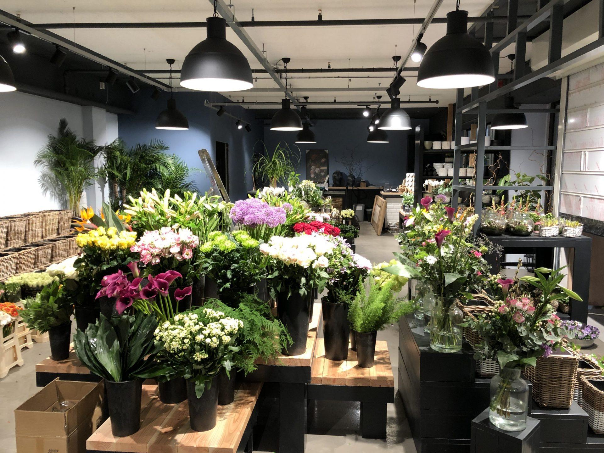 Afbeelding #001 voor het verhaal Preview: de heropening van Mies Bloemen in Tref Middelburg