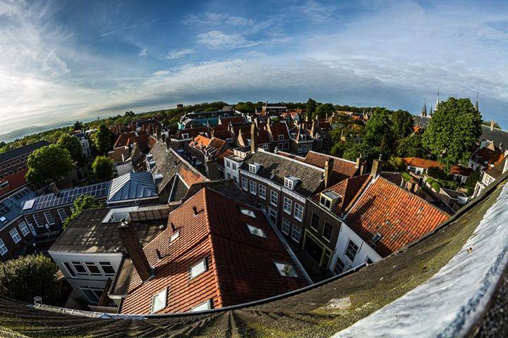 Afbeelding #000 voor het verhaal Roof with a view