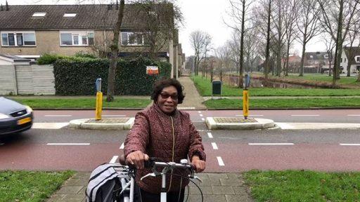 Afbeelding #000 voor het verhaal Terug naar wijk Dauwendaele, 30 jaar na dato