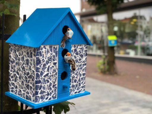 Afbeelding #001 voor het verhaal Vrolijk en kleurrijk: vogelhuisjes in de Segeersstraat