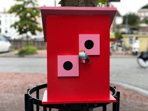 Afbeelding #002 voor het verhaal Vrolijk en kleurrijk: vogelhuisjes in de Segeersstraat