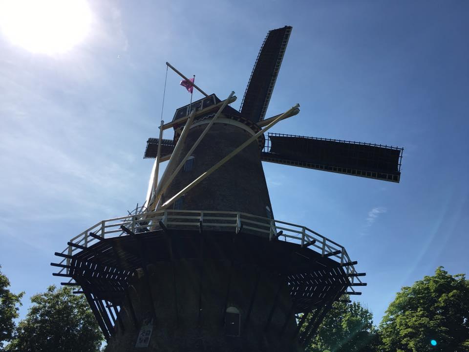Afbeelding #000 voor het verhaal Walcherse Molendag, ook in Middelburg