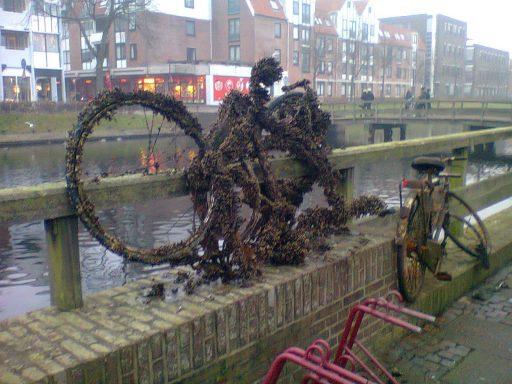 Afbeelding #000 voor het verhaal Wij waren de fietsen
