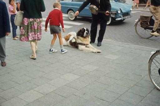 Afbeelding #003 voor het verhaal Zomer in Zeeland, 1967, in 35 kleurenfoto's