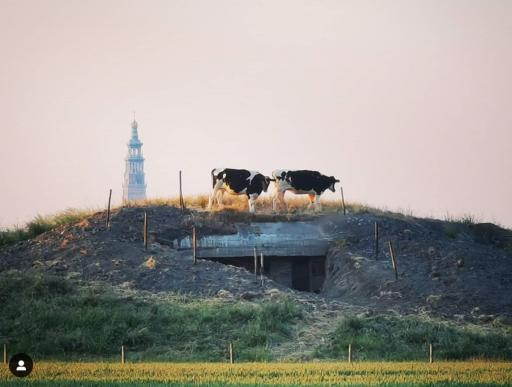 Afbeelding #001 voor het verhaal Zomerzotheid: Middelburg op Instagram, juni 2020