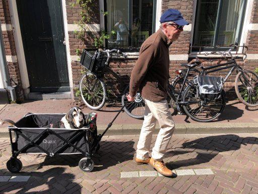 Afbeelding #000 voor het verhaal Zonnige Middelburgse terrassen, 20 april 2019