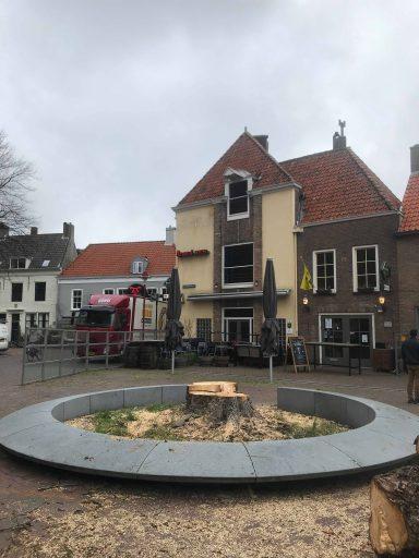 Afbeelding #003 voor het verhaal Koorkerkstraatkastanje definitief geveld