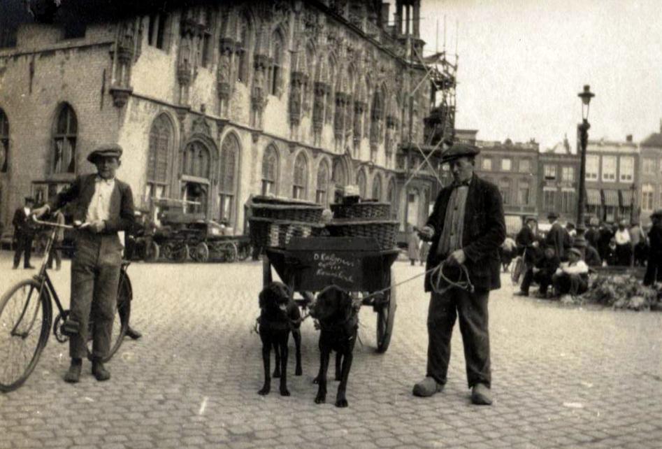 Afbeelding #009 voor het verhaal Een uitstapje naar Middelburg, juli 1923