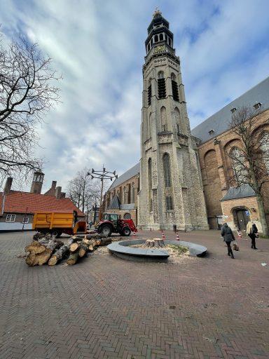 Afbeelding #005 voor het verhaal Koorkerkstraatkastanje definitief geveld