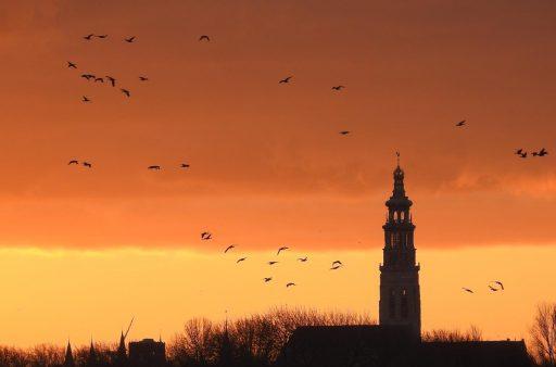 Afbeelding #008 voor het verhaal De winterse schoonheid van Middelburg