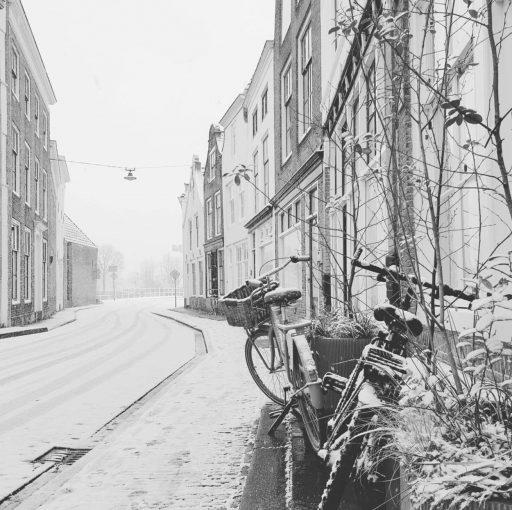 Afbeelding #012 voor het verhaal Om snel of niet te vergeten: Middelburg op Instagram, januari 2021