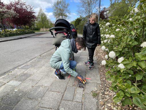 Afbeelding #001 voor het verhaal Make Their Memory Shine: samen de struikelstenen van Middelburg oppoetsen