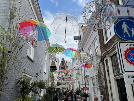 Afbeelding #004 voor het verhaal De paraplu's zijn terug boven de Reigerstraat