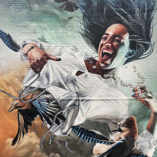 Afbeelding #000 voor het verhaal Gezocht: een muur voor Danny Vera