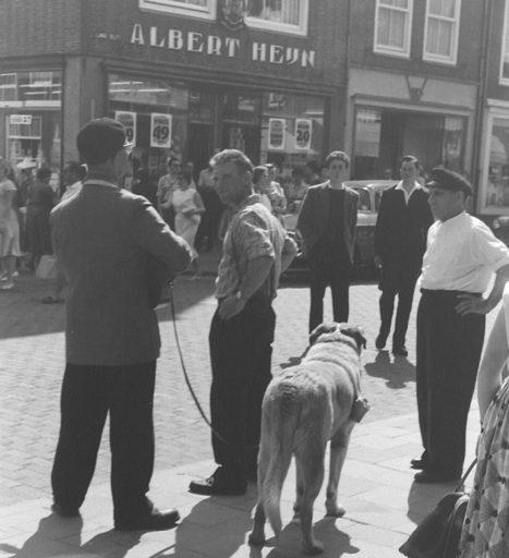 Afbeelding #013 voor het verhaal Middelburgse honden door de jaren heen