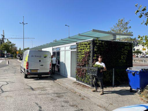 Afbeelding #003 voor het verhaal Verticale tuintjes voor busstation Kanaalweg Middelburg