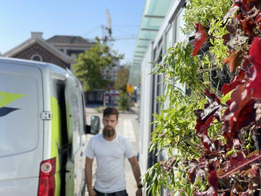 Afbeelding #004 voor het verhaal Verticale tuintjes voor busstation Kanaalweg Middelburg